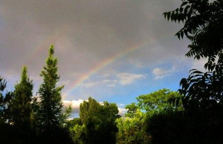 rainbow052714a