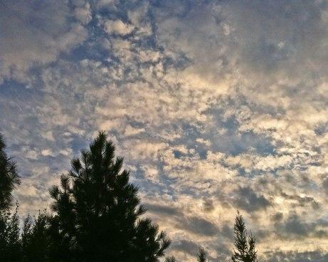 clouds082414