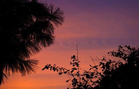 sunset080914