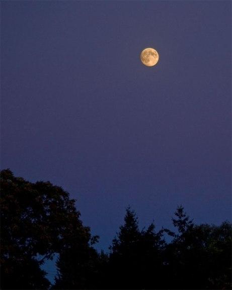 moon090714