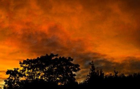 sunrise083114