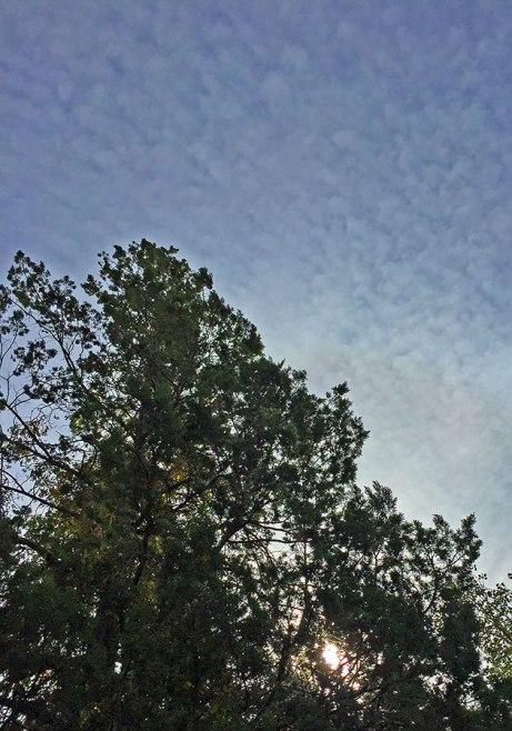 clouds101414