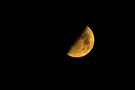 moon100114
