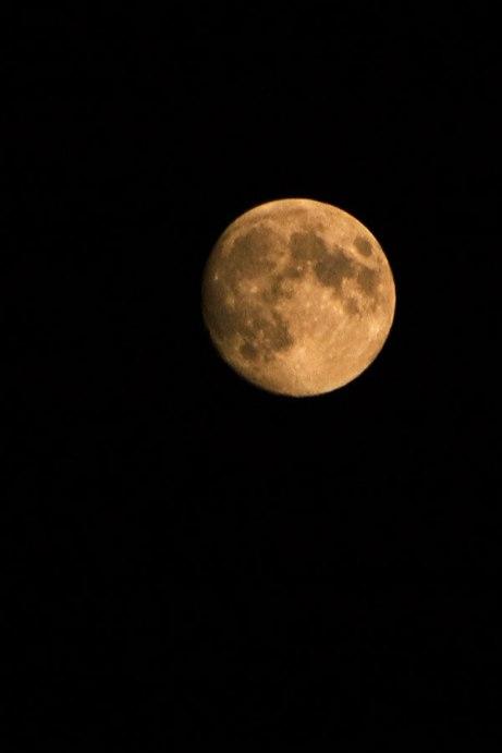 moon100614