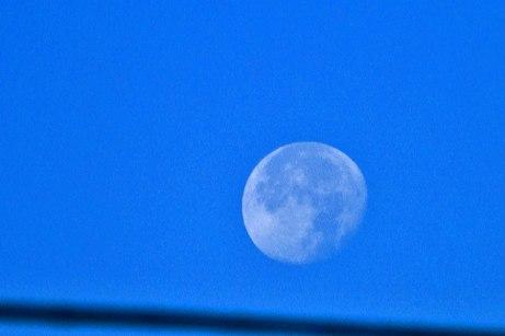 moon101014