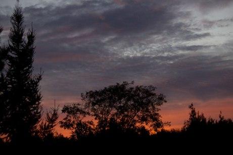sunrise102014a