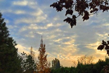 clouds111914