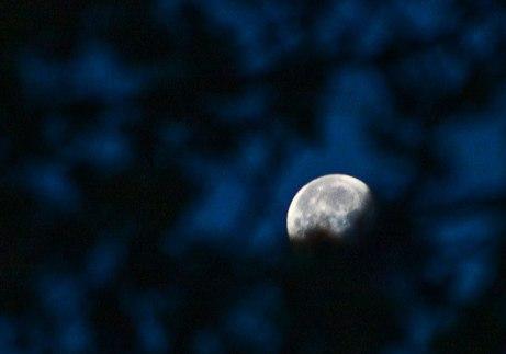 moon111014