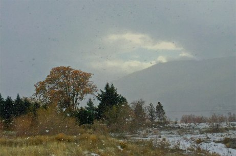 snow112914