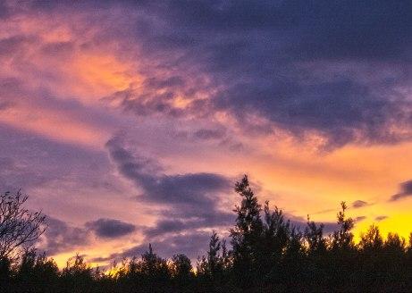 sunrise110314