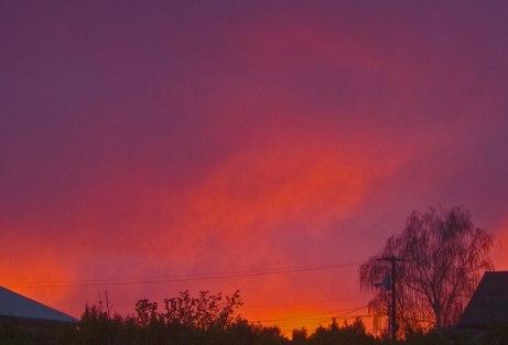 sunrise111114