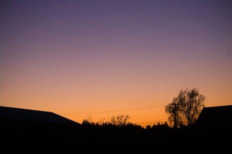 sunrise111614