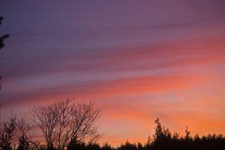 sunrise111814