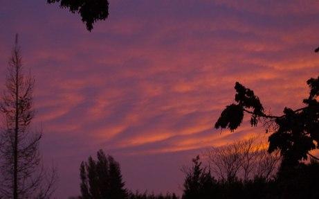 sunrise112414