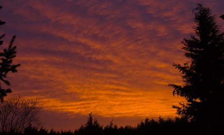sunrise112414a