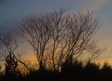 sunrise120314