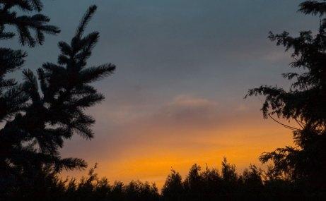sunrise122114