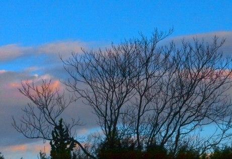 sunset122414