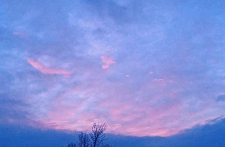 pinkBlue012315