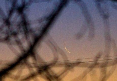 moon021715