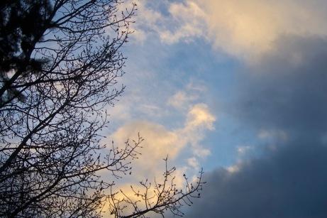 sky020115