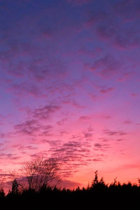 sunrise021315