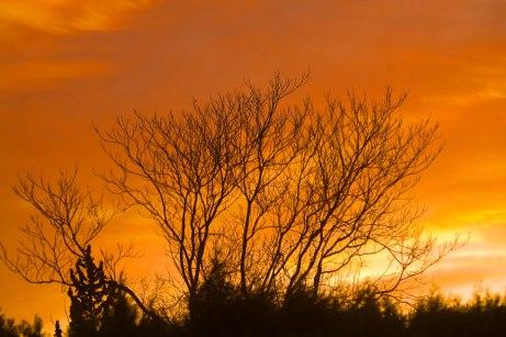 sunrise021415