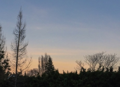 sunset022315