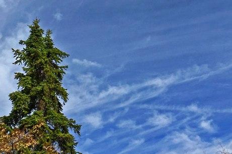 clouds031315
