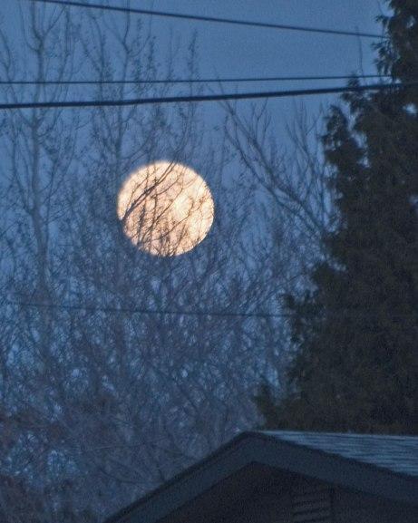 moon030415