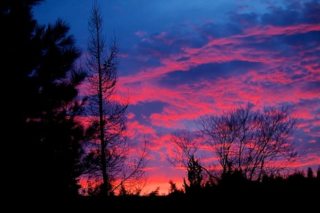 sunrise032015